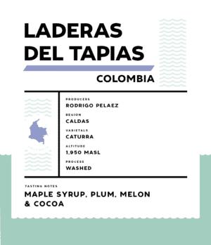 Springbok Laderas Del Tapias