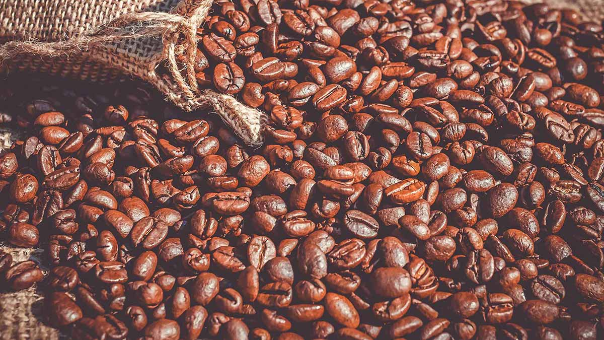 coffee blockchain auction