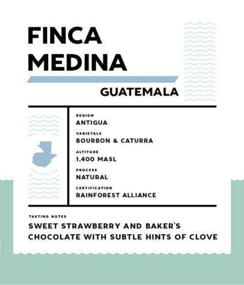 Springbok Coffee Finca Medina