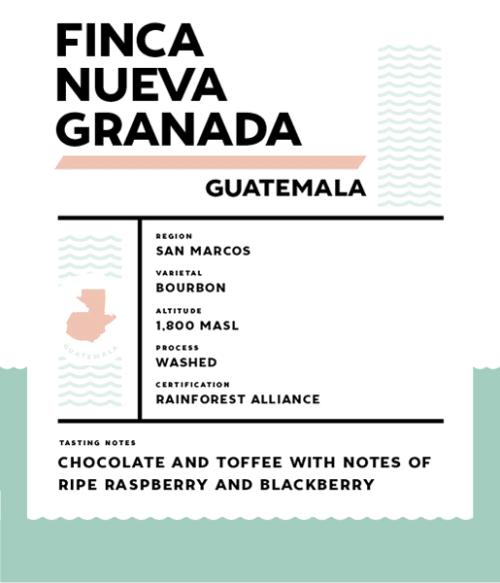 Springbok Coffee Finca Nueva Granada
