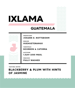 Springbok Coffee Ixlama